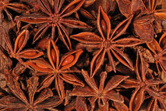 Star anise close up Stock Photo