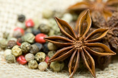 Star anise closeup. Star anise and colorfull pepper Stock Images