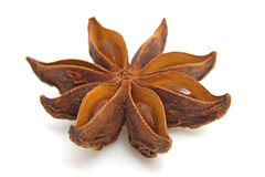 Star anise in closeup Stock Photos