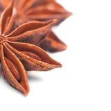 Star anise closeup Stock Photos