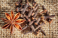 Star anise and cloves Royalty Free Stock Photo
