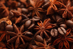 Star anise and coffee beans Royalty Free Stock Images