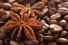 Star anise with coffee beans closeup macro shot Stock Photo