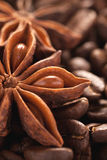 Star anise and coffee beans closeup macro shot Royalty Free Stock Image