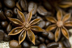 Star anise and coffee composition. Star anise and coffee - shallow DOF Royalty Free Stock Image