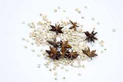 Star Anise and Coix seed Royalty Free Stock Images