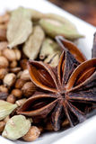Star anise with coriander seeds and cardamom Royalty Free Stock Images