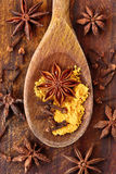 Star anise, curry and cloves. Star anise with curry and cloves on wooden spoon Royalty Free Stock Photo