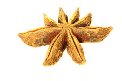 Star anise D Stock Image