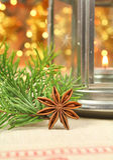 Star anise decoration Stock Image