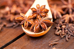 Star anise extreme close up Stock Photos