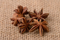 Star anise flowers on sacking Stock Photos