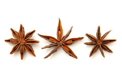 Star anise fruits Stock Photo