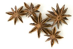 Star anise fruits, isolated Royalty Free Stock Photo