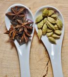 Star anise, green cardamom and fennel seeds. To cut down a tree with a crack Royalty Free Stock Photography