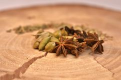Star anise, green cardamom and fennel seeds. To cut down a tree with a crack Royalty Free Stock Image