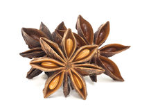 Star Anise Group Isolated on white Stock Images