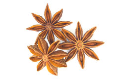 Free Star Anise Herb Royalty Free Stock Image - 93680076