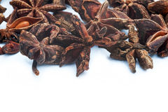 Star Anise herb on white background Stock Photos