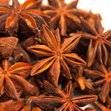 Star anise or Illicium verum Stock Photography