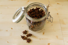 Star anise - Illicium verum Stock Photography