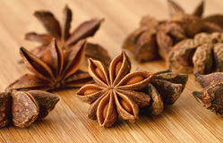 Star Anise / Illicium verum Stock Photos