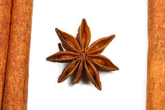 Star anise isolated Stock Images