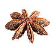Star anise isolated on white Stock Photos