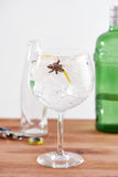 Star anise and juniper gintonic Royalty Free Stock Photos