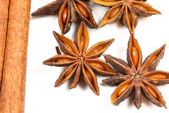 Star anise macro Stock Photography