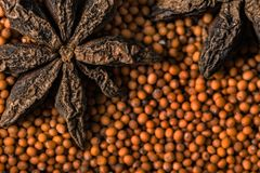Star anise and mustard seeds stock image