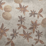 Star anise, nutmeg. Vintage wallpaper background with star anise, nutmeg Royalty Free Stock Images