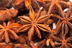 Star Anise Or Illicium Verum Royalty Free Stock Photo