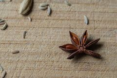 Star Anise and other spices. Star anise with a scattering of fennel seeds and cardamom stock images