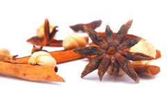 Star anise and other spices. On white background Royalty Free Stock Photos