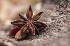 Star anise over a wooden surface Royalty Free Stock Photo