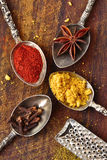 Star anise, paprika, cloves and curry. With spoons and grater Stock Photography