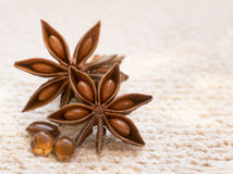 Star Anise pods Stock Images
