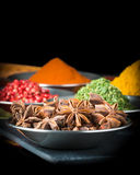 Star of Anise Portrait Stock Image