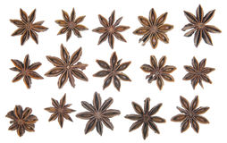 Star anise in a row Stock Image