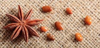 Star anise on a sackcloth. Dried star anise on a sackcloth Royalty Free Stock Photos