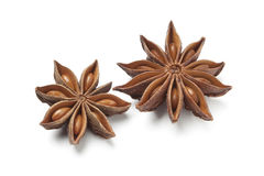 Star anise seed Royalty Free Stock Image