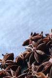Star anise seeds on the blue blurred background Stock Images