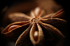 Star anise seeds. Blurred background Stock Photos
