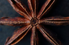 Star anise seeds on dark background. Top view Royalty Free Stock Image