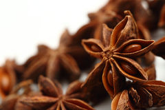 Star anise seeds isolated on white background. Macro Royalty Free Stock Photo
