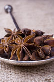 Star Anise on Silver Spoon Royalty Free Stock Images