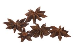 Star anise spice Stock Image