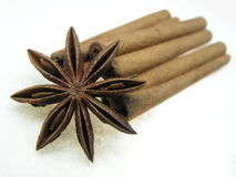 Star anise spice and cinnamon. Pictured is star anise (  Illicium verum), cinnamon bark sticks ( Cinnamomum verum), . Favorites of asians in their dishes Stock Photography