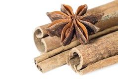 Star anise spice fruit on the cinnamon sticks Stock Photography